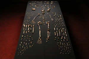 Homo Naledi, Maropeng, 'n nekropool twee mijoen jaar oud