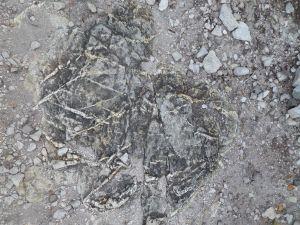 Kriskras sedimentere patrone wat die era dui
