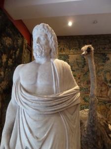 Plato en Nog 'n Volstruis